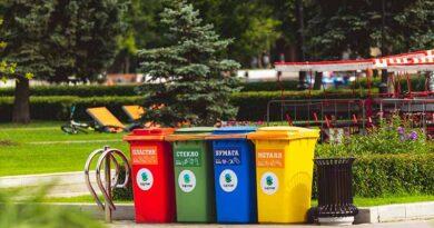 jak ukryć kosz na śmieci w ogrodzie